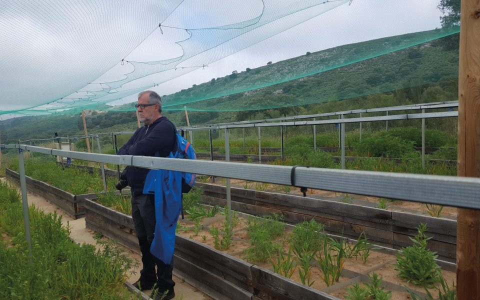 Visit of clients of the rural house Palacio Viejo de Las Corchuelas to the experiments in agroecology at the Aprisco de Las Corchuelas